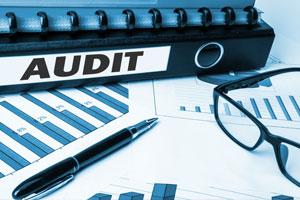 Auditoría a proveedores